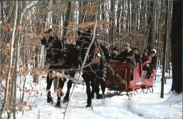 Ma & Pa's Horse Drawn Sleigh and Surrey Rides