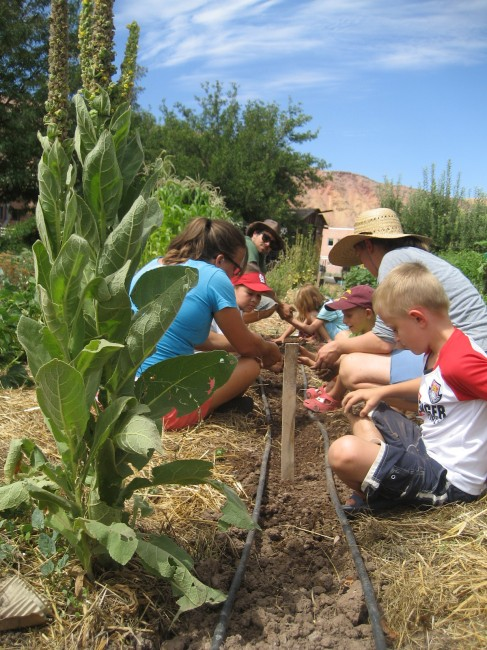Youth Garden Project