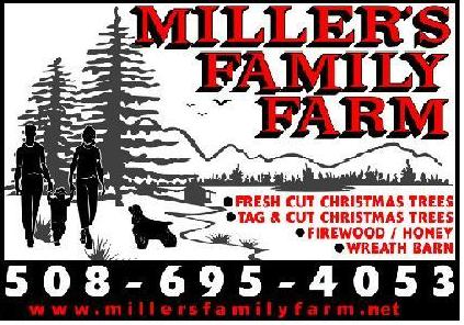 Millers Christmas Tree Farm.Millers Family Farm Agritourism World