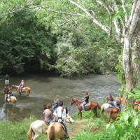 Banana Bank Lodge & Jungle Horseback Adventure