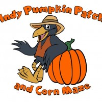 Indy Pumpkin Patch and Corn Maze