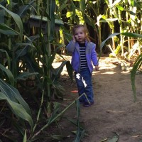 The Liberty Corn Maze