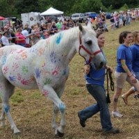 "Annual ""Horse and Hound"" Wine Festival"