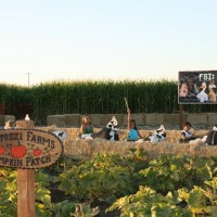 Fantozzi Farms Corn Maze & Pumpkin Patch