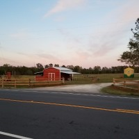 The Farmer's Barn Corn Maze, Family Fun & Farm Fresh Produce