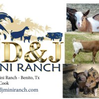 CD&J Mini Ranch