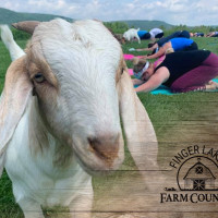 Finger Lakes Farm Country