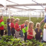 Fahr Greenhouses, Inc.